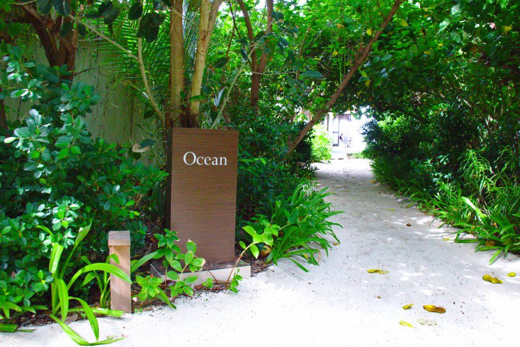 Oceanの入り口